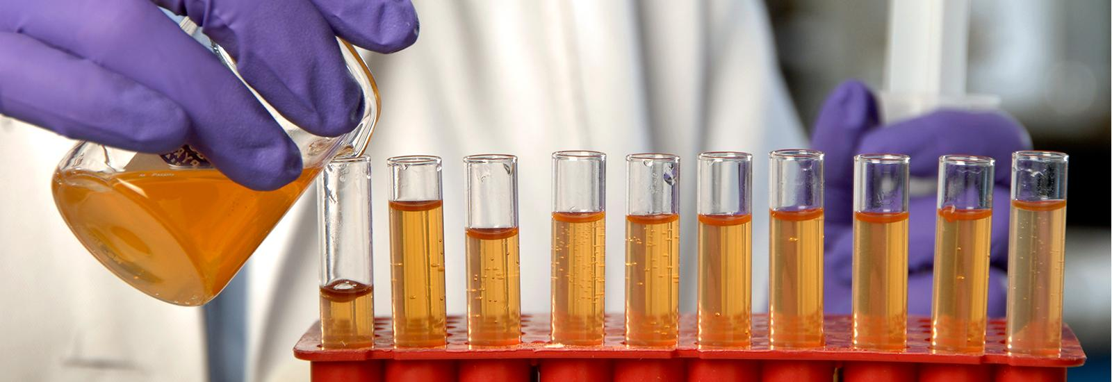 Liquid being poured into test tubes